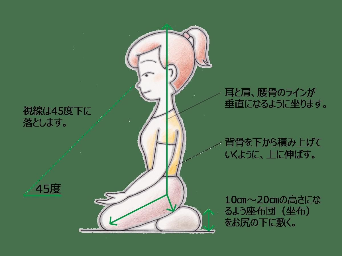 マインドフルネス瞑想の姿勢:視線、坐布、重心