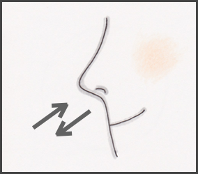 マイドフルネス:呼吸、鼻先